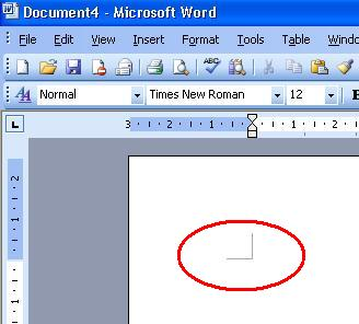 Macro to resize a selected picture in Word - Microsoft ...