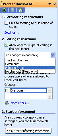 microsoft word protect document sections